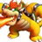 king koopa Member Profile