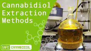 Image result for cbd extraction