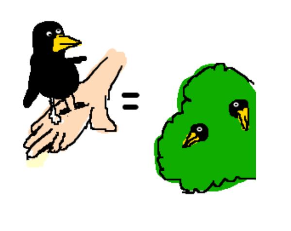 the bird in the bush If you're single and interested in doing something a bit out of the ordinary, you've come to the right place bird in the bush is a group for single lesbians over 40 and although we're brighton-based,.